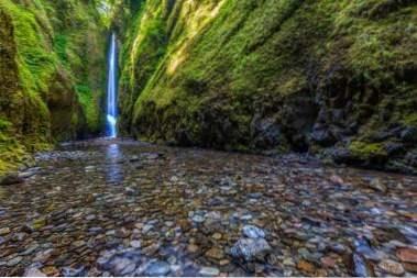 Oregon stad dating